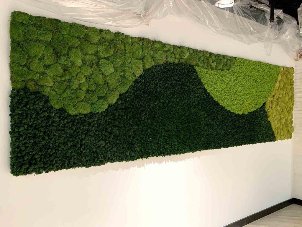 pole moss along a wall