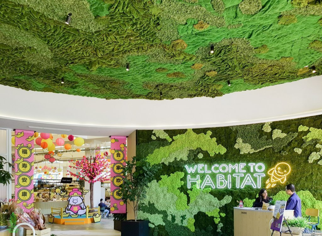 artificial moss on the ceiling and wall