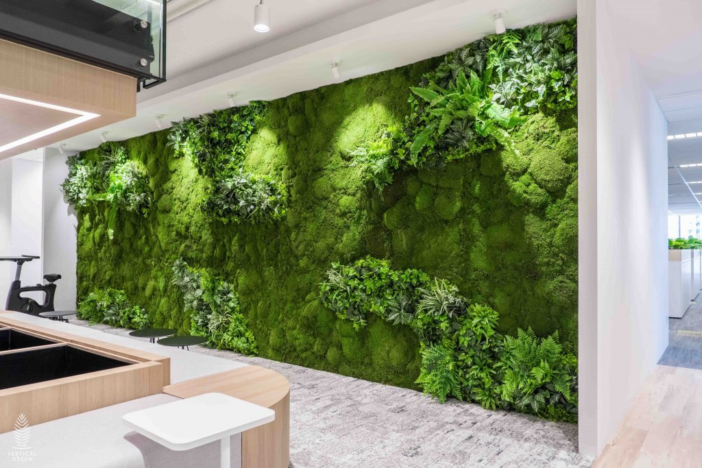 Flat moss along the wall