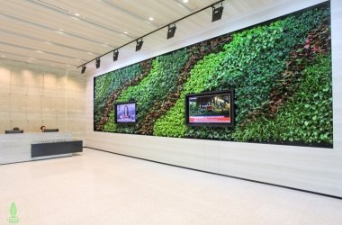 PROJECT: Starhub COUNTRY: Singapore